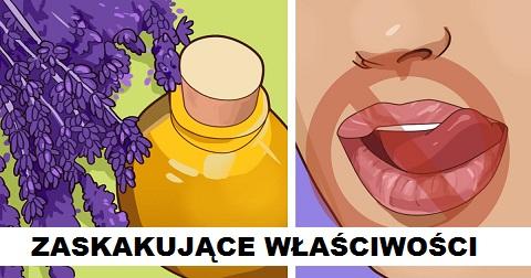 11 zaskakujących zastosowań olejku z lawendy